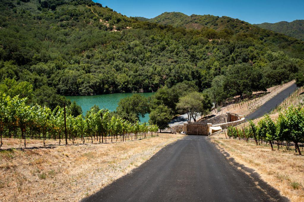 Road up to Alamitos Vineyards